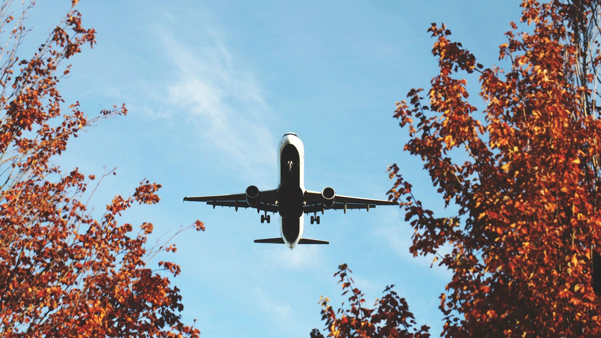 Is It Safe to Plan International Fall Travel Right Now?